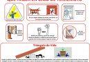 Los Fenómenos naturales y los desastres- 3